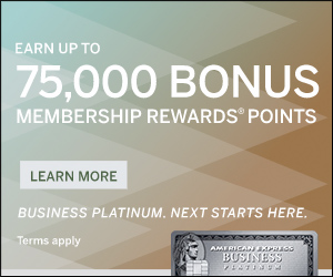 The Enhanced Business Platinum® Card from American Express OPEN
