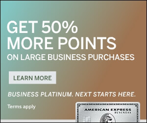 The Business Platinum® Card from American Express OPEN