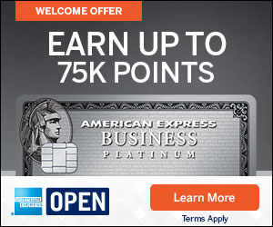 The Business Platinum Card® from American Express OPEN